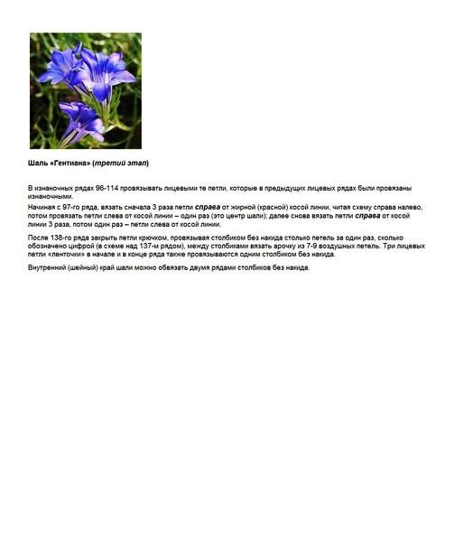 Гентиана_Этап 3 (524x600, 90Kb)