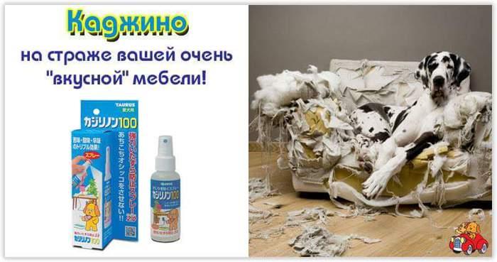 FB_IMG_1475527965062 (700x369, 38Kb)