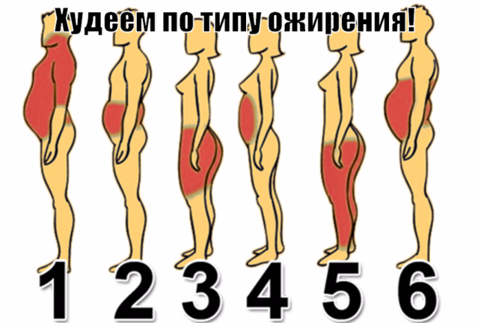 "alt=""Худеем по типу ожирения!""/2835299_ (700x470, 277Kb)"