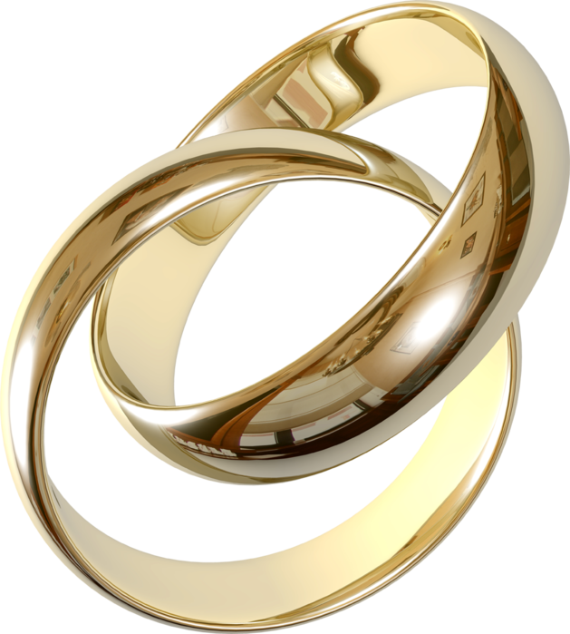 Various gold and silver jewelry PNG (6) (629x700, 379Kb)