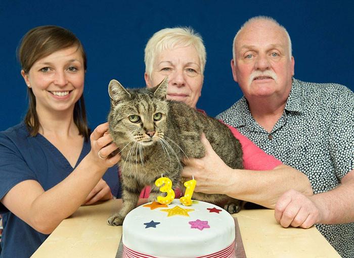 самый старый кот в мире 1 (700x511, 298Kb)