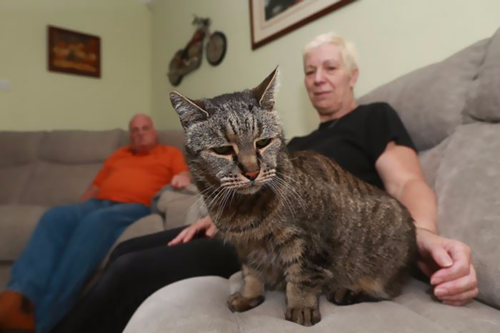 самый старый кот в мире 3 (700x467, 158Kb)