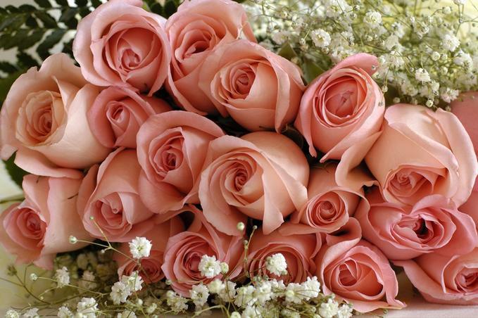 Фото открытки с днем рождения с роза