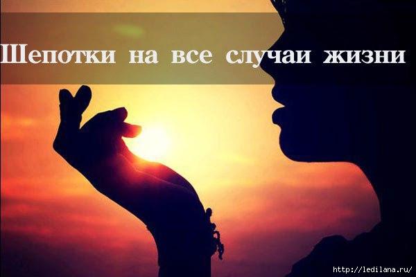3925311_shepotki (600x400, 78Kb)
