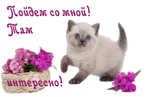 123217820_90042184_0_8b6a6_fff808de_Mkopirovanie (300x199, 77Kb)