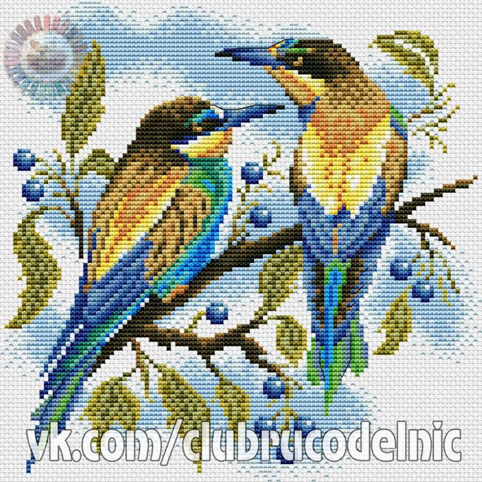 Яркие птички (700x700, 825Kb)