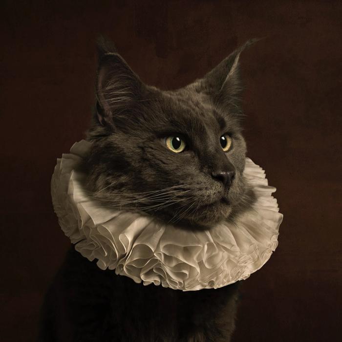 marie-cecile-thijs---cat_med_hr-4 (700x700, 354Kb)