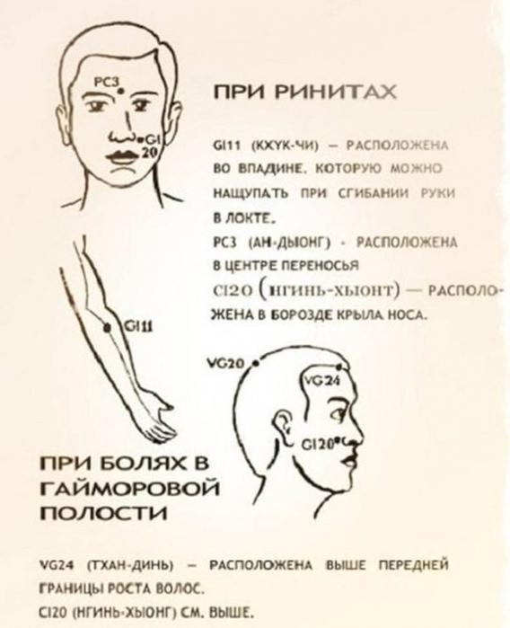 3224267_content_2_1__econet_ru_1_ (568x700, 181Kb)