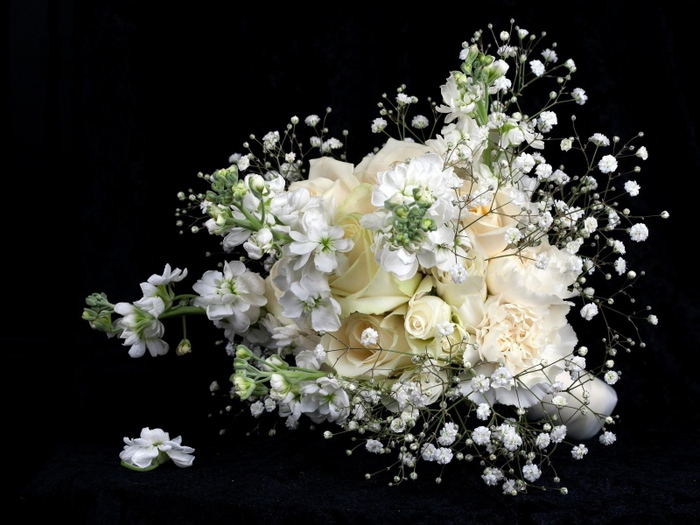 roses_babys_breath_bouquet_contrast_black_background_55544_800x600 (700x525, 147Kb)