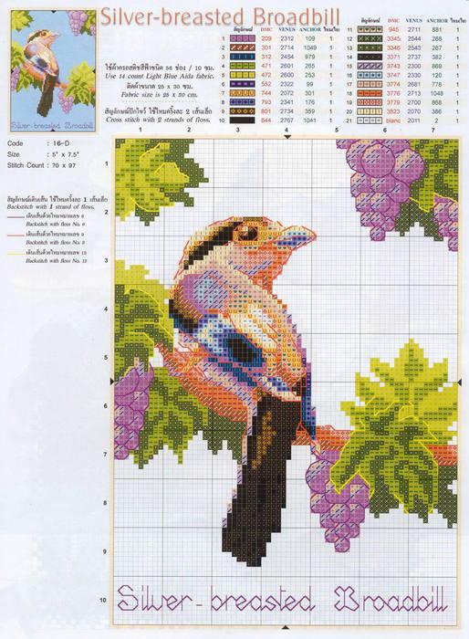 птички1 (514x700, 339Kb)