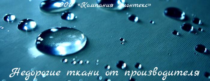 2835299_OOO_Kompaniya_Lionteks (700x273, 366Kb)