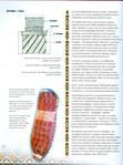 Превью 185_Рњ. Шандро - Гуцульські вишивки [2005, UKR,RON,USA]_Страница_033 (521x700, 376Kb)