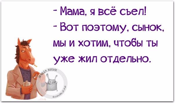 1446232392_frazki-9 (604x356, 146Kb)