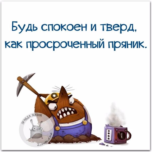 1446232404_frazki-21 (604x604, 181Kb)