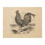 Превью vintage_kulm_fowl_rooster_chicken_chickens_hen_woodsnapwoodcanvas-rcafe917bdc934865aaa1e6e3e39f2c0c_zfolg_324 (324x324, 48Kb)