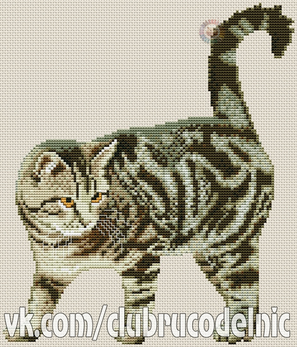 European Cat (597x700, 552Kb)