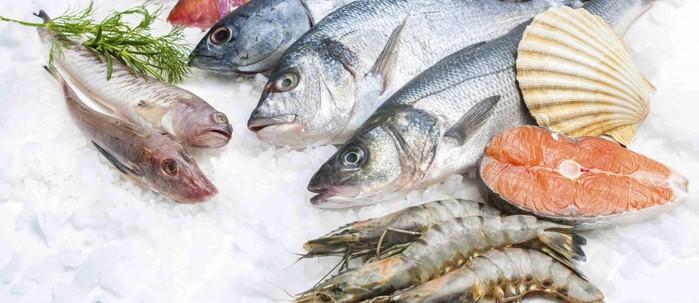 Seafood-1200x520 (700x303, 70Kb)