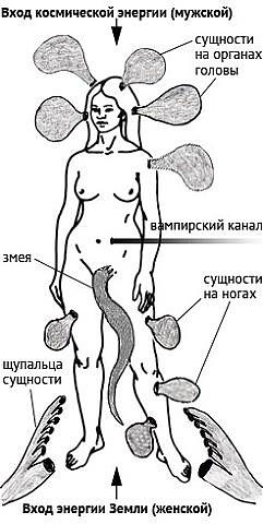 Энергетические паразиты секс
