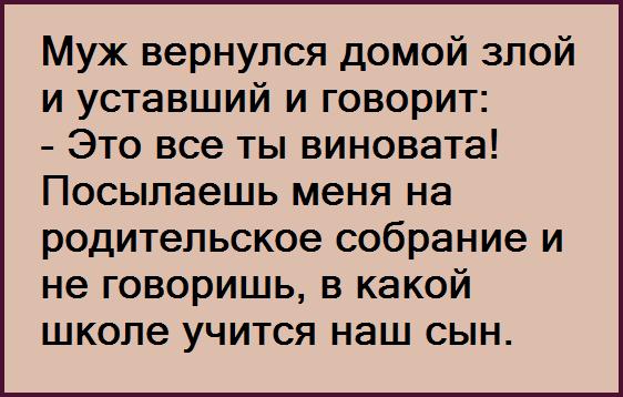 3416556_image_1 (562x358, 13Kb)