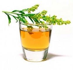 лекарственные травы противопоказания/1868538_ (250x238, 12Kb)