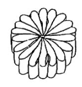 Captura de Tela (466) (167x177, 16Kb)