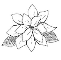 Captura de Tela (468) (204x202, 19Kb)