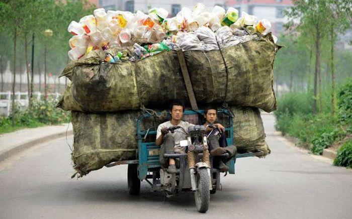 Как оно  - жить в мусоре!