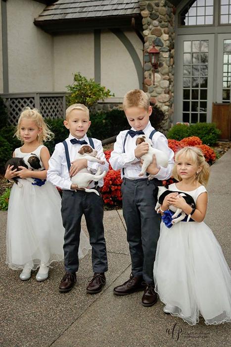 щенки на свадьбу 4 (467x700, 377Kb)