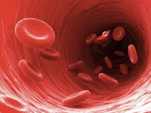 Универсальное средство разжижает кровь