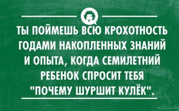 4882572_prikolnie_kartinki_s_nadpisjami_07 (600x373, 45Kb)