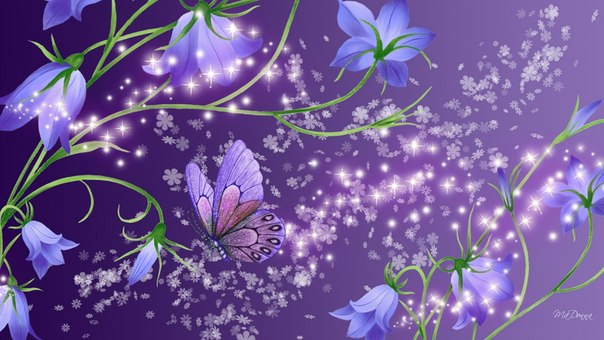 ночные цветы (604x340, 62Kb)