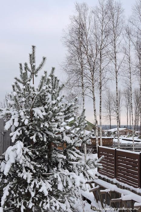 а за городом зима, зима, зима (2) (466x700, 371Kb)