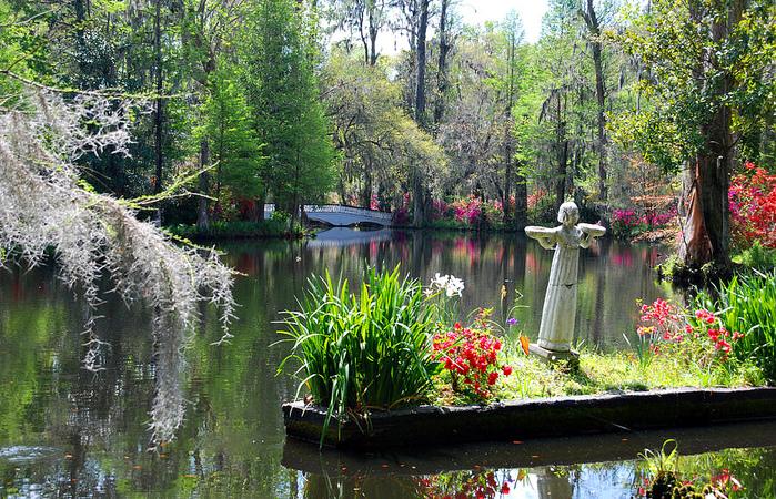 bmagnolia-gardens-in-charleston-susanne-van-hulst (700x450, 355Kb)
