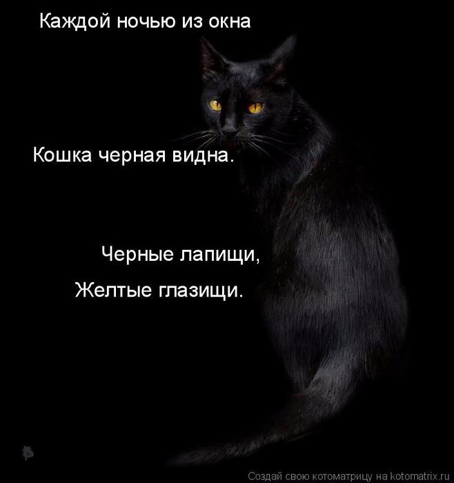 kotomatritsa_1 (658x700, 129Kb)