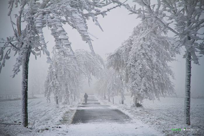 "alt=""Скоро выпадет снег...""/2835299_Skoro_vipadet_sneg___1 (700x466, 59Kb)"