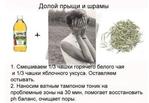 Превью РѕС' прыщей Рё шрамов (543x375, 106Kb)