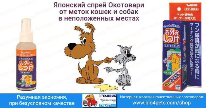 FB_IMG_1476909967715 (700x369, 40Kb)