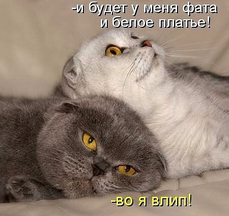 image (2) (450x426, 119Kb)