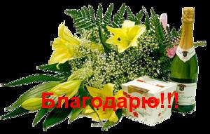 118220026_0_763eb_b74bcf1c_M (300x191, 102Kb)