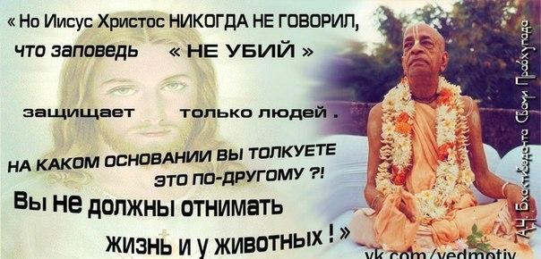 5561137_131819401_wpidoshibkavysokobelkovyhproduktovkakneobhodimyhdlyazdorovya_i_1 (604x290, 57Kb)
