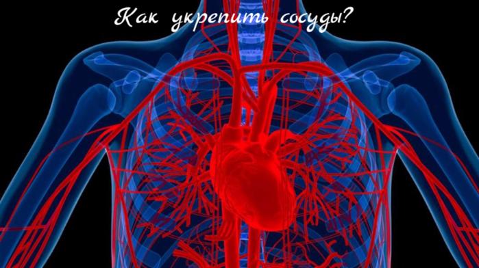 "alt=""Как укрепить сосуды? ""/2835299_Kak_ykrepit_sosydi_ (700x392, 435Kb)"