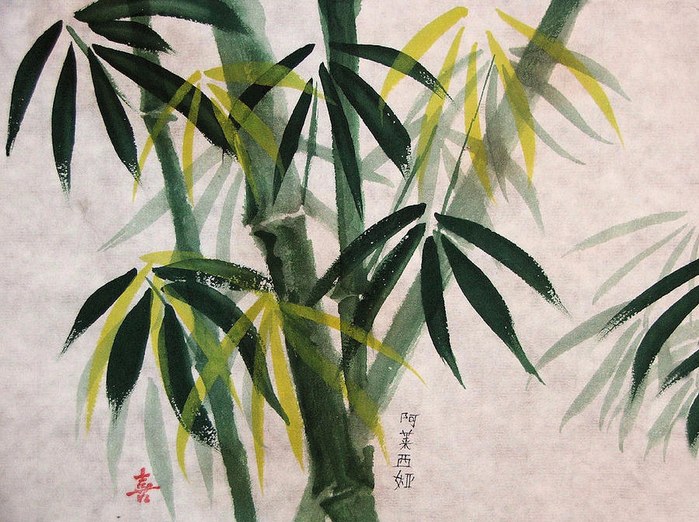 splendid-bamboo-alethea-mckee (700x522, 475Kb)