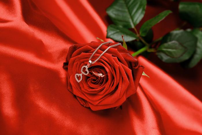 розы и любовь 2 (700x466, 366Kb)