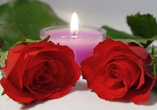 розы и любовь 11 (540x380, 145Kb)