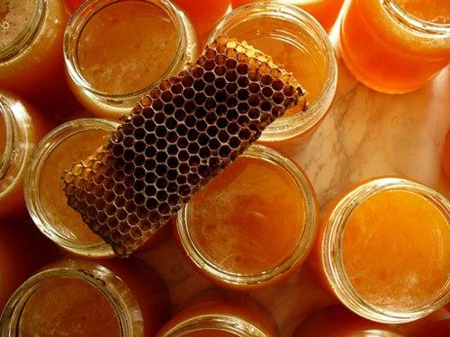 мед (500x375, 53Kb)