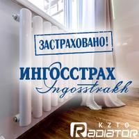 5922005_zastrahovannyjkzto_200x200 (200x200, 221Kb)