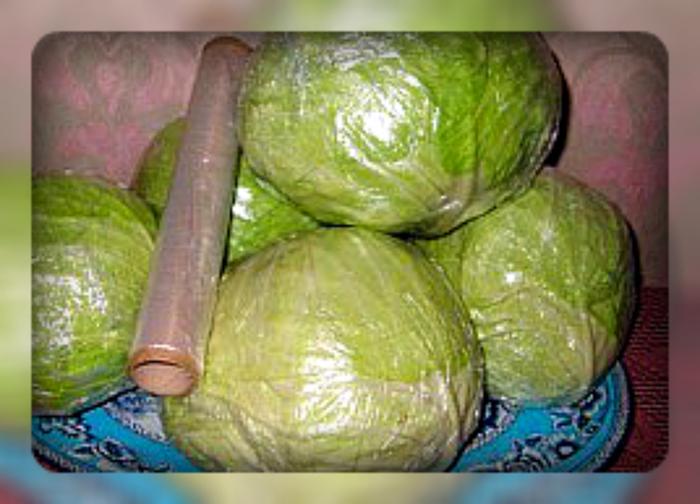 как правильно хранить в холодильнике свежую капусту