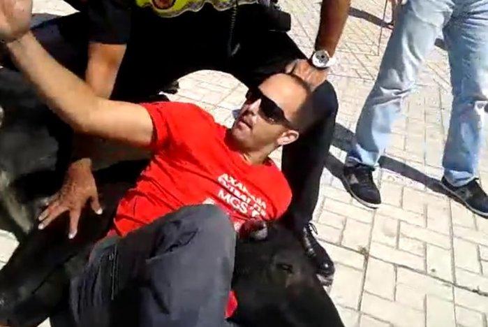 В Испании мужчина поборол быка на улице Малаги. Видео