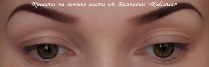 "alt=""Красота на кончике кисти от Компании «Kodi.in.ua»""/2835299_Krasota_na_konchike_kisti_ot_Kompanii_Kodi_in_ua (700x224, 195Kb)"