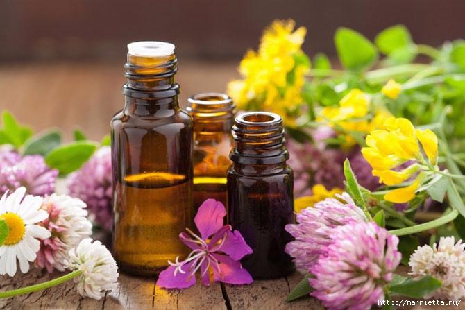 Эфирные масла - способы применения и терапевтические свойства (1) (670x447, 186Kb)